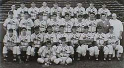 1944 St. Louis Cardinals